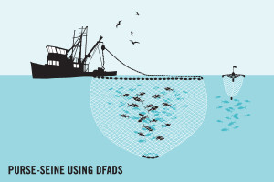 Fishing by purse seine using DFADs