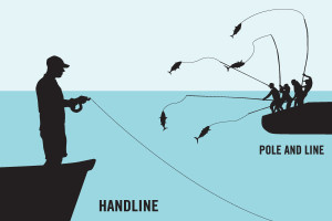 Fishing by Pole and Line