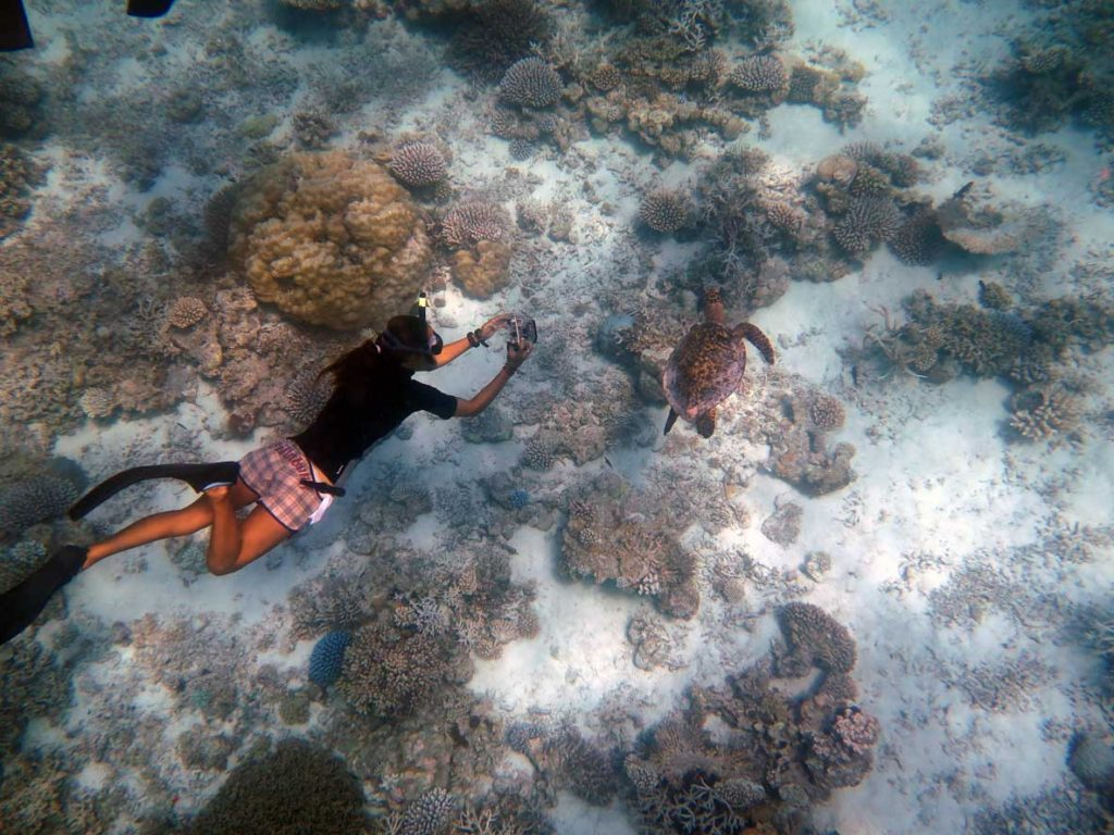 Citizen scientist taking photo of Lucia for ORP Turtle Phot-ID research Maldives