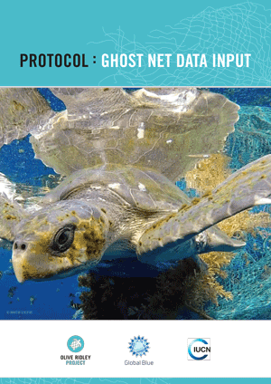 Ghost Net Data Input Protocol. Infographic.