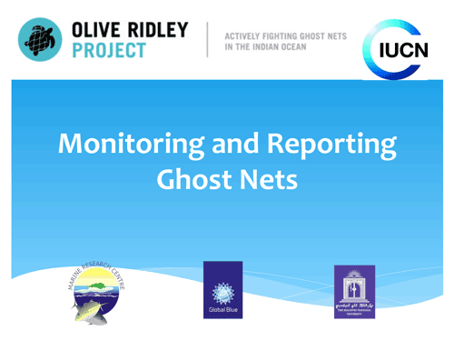 Montoring and reporting ghost ntes workshop. Infographic.