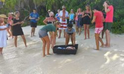 ORP Volunteers and Coco Palm guests getting ready to release Beyonce and Noor on the beach