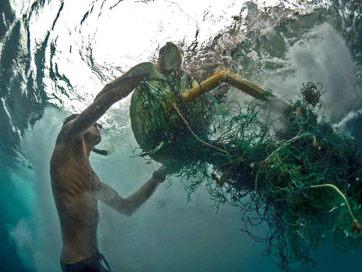 Turtle trapped in ghost net being rescued