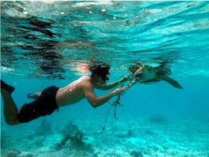 OPR volunteer working under water in Maldives