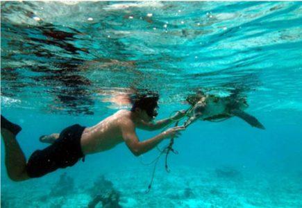 Volunteer Martin Realises His Dream of Working with Sea Turtles