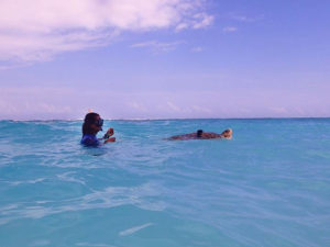 Olive-ridley-turtle-patient-Penny-swimming-lesson