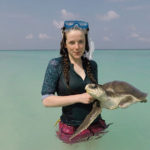 Volunteer Hatti taking turtle patient Stitch for a swimin the sea