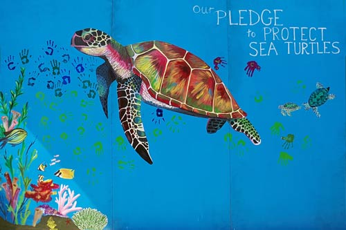 Vaavoshi Turtle Festival 2019 sea turtle pledge mural painted by Dr. Claire Lomas