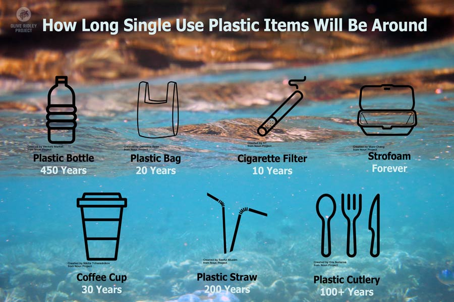 How long single use plastic items will be around
