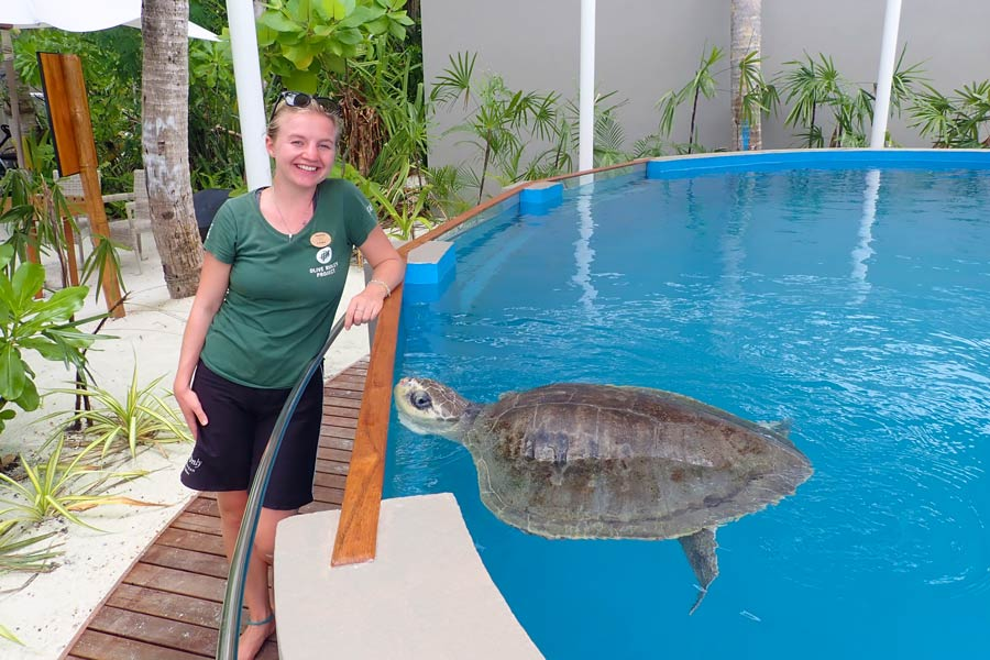 ORP Sea Turtle Biologist Laura with Azura, the first patient at the One & Only Turtle Rehabilitation Centre