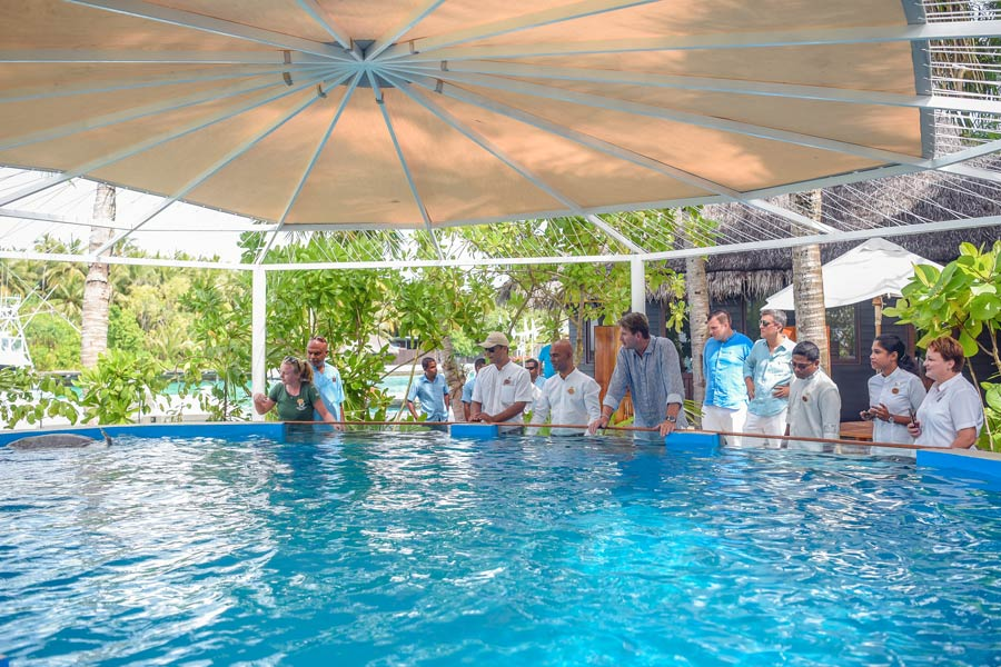 One & Only Reethi Rah staff welcomes Azura to the Turtle Rehabilitation Centre
