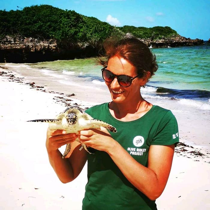 Women in science: Dr. Joana Hanckock with a juvenile green turtle at Diani Beach in Kenya