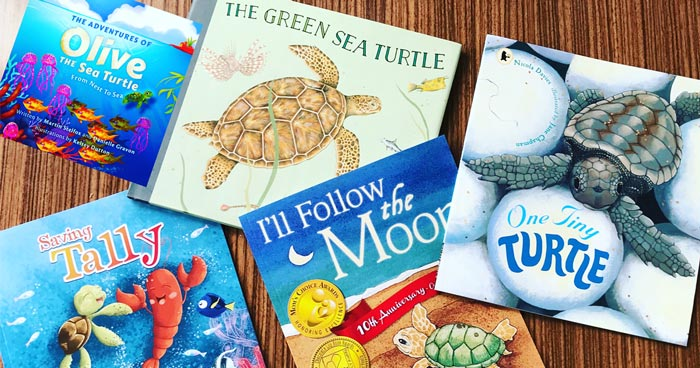 Children's turtle books. Image.