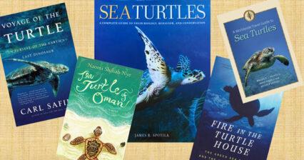 Turtle Book Club: General Turtle Stories