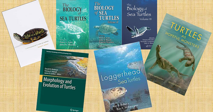 Sea turtle science book covers. Image.