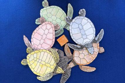 Sea Turtles Activity Bundle: Online Activity Programme