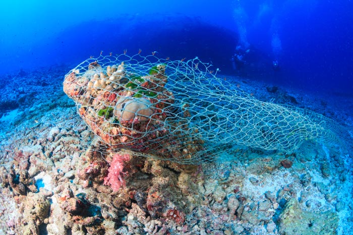 Ghost net smothering coral reef. Image.