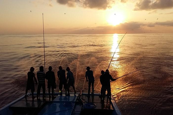 Pole and line fishing at sunrise, Maldives. Image/